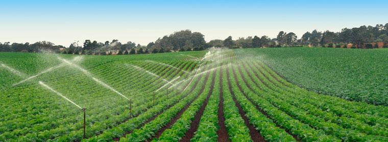 Landwirtschaft und Gewässerschutz
